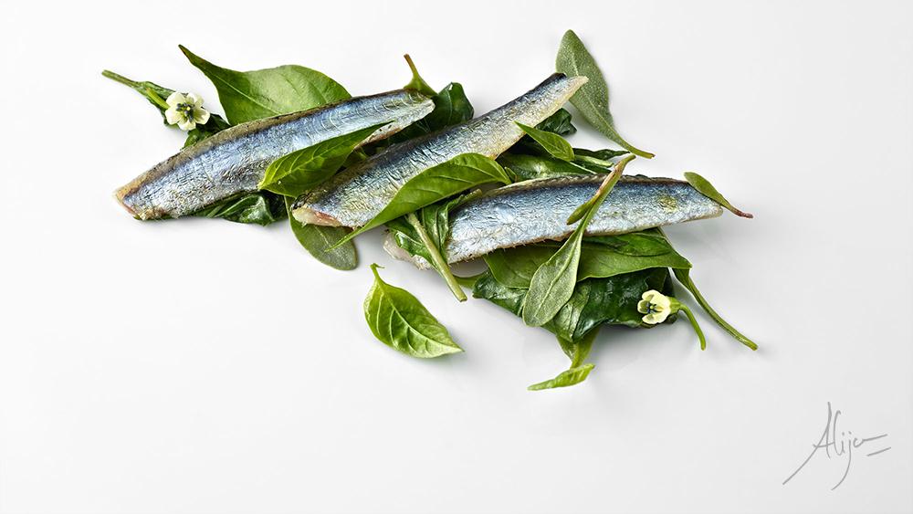 Anchois, feuilles de piment d'Anglet et algue de terre
